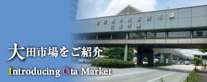 大田市場をご紹介-Introducing Ota Market-